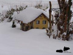 weihnachtliche_bilder_1_20131215_1462970909.jpg